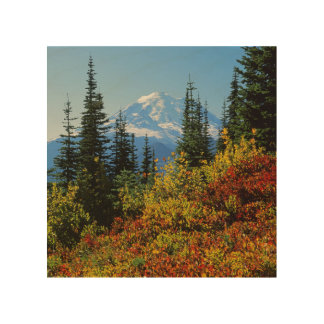 USA, Washington, Mt. Rainier National Park 2 Wood Print