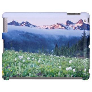 USA, Washington, Mt. Rainier National Park 4
