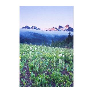 USA, Washington, Mt. Rainier National Park 4 Canvas Print