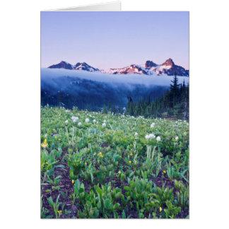 USA, Washington, Mt. Rainier National Park 4 Card
