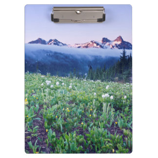 USA, Washington, Mt. Rainier National Park 4 Clipboard