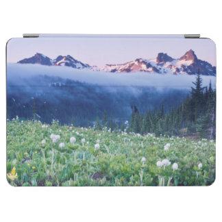 USA, Washington, Mt. Rainier National Park 4 iPad Air Cover