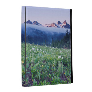 USA, Washington, Mt. Rainier National Park 4 iPad Folio Cases