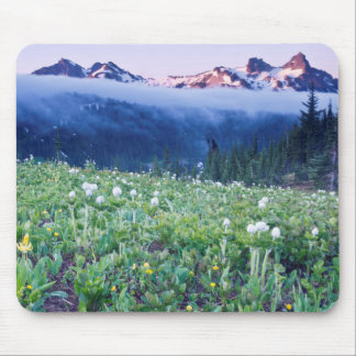 USA, Washington, Mt. Rainier National Park 4 Mouse Pad