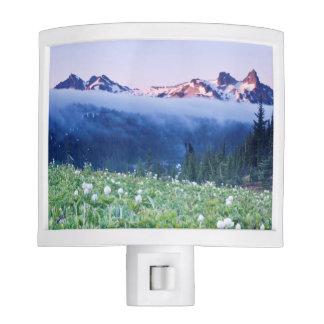 USA, Washington, Mt. Rainier National Park 4 Night Light