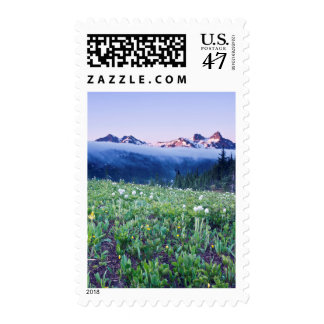 USA, Washington, Mt. Rainier National Park 4 Postage