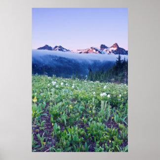 USA, Washington, Mt. Rainier National Park 4 Poster