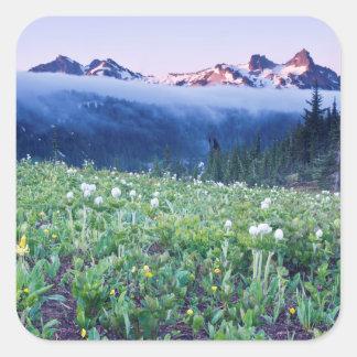 USA, Washington, Mt. Rainier National Park 4 Square Sticker