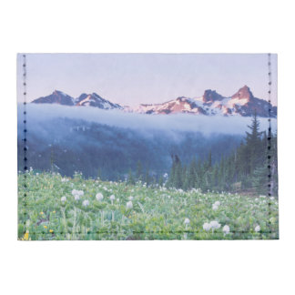 USA, Washington, Mt. Rainier National Park 4 Tyvek® Card Case Wallet