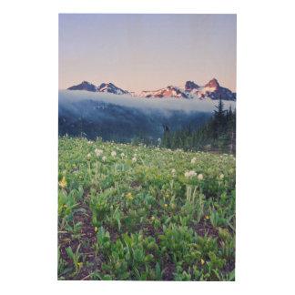 USA, Washington, Mt. Rainier National Park 4 Wood Print