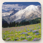 USA, Washington, Mt. Rainier National Park. Beverage Coaster