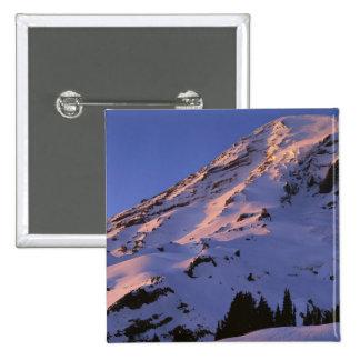 USA, Washington, Mt. Rainier National Park Pinback Button