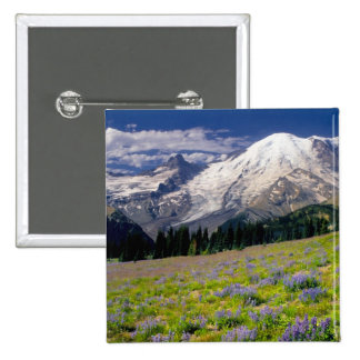 USA, Washington, Mt. Rainier National Park. Buttons