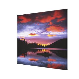 USA, Washington, Mt. Rainier National Park, Canvas Print