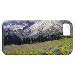 USA, Washington, Mt. Rainier National Park. iPhone 5 Case