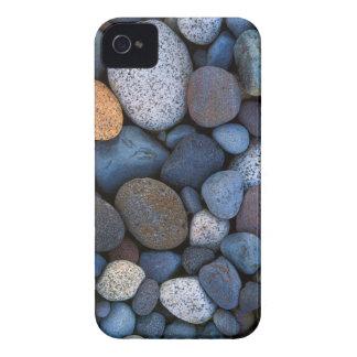 USA, Washington, Mt. Rainier National Park iPhone 4 Cases