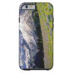 USA, Washington, Mt. Rainier National Park. Tough iPhone 6 Case