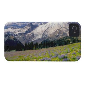 USA, Washington, Mt. Rainier National Park. iPhone 4 Case-Mate Case