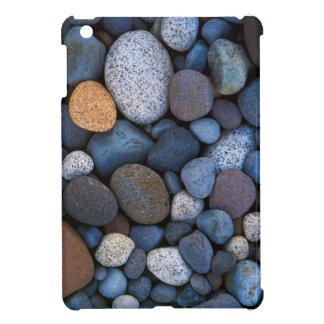 USA, Washington, Mt. Rainier National Park iPad Mini Case