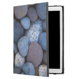 "USA, Washington, Mt. Rainier National Park iPad Pro 12.9"" Case"