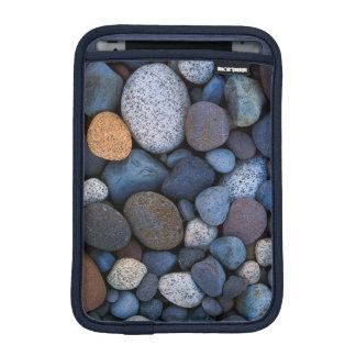 USA, Washington, Mt. Rainier National Park iPad Mini Sleeve