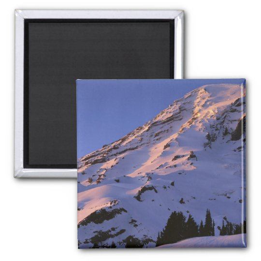 USA, Washington, Mt. Rainier National Park Magnet
