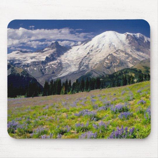 USA, Washington, Mt. Rainier National Park. Mouse Pad