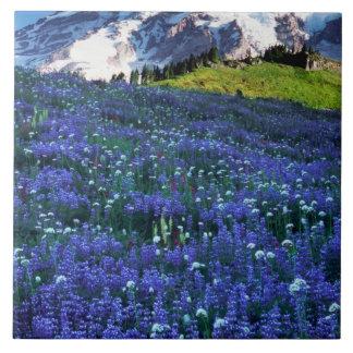 USA, Washington, Mt. Rainier National Park. Mt. Ceramic Tile