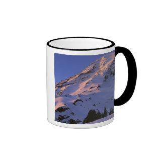 USA, Washington, Mt. Rainier National Park Mugs