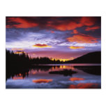 USA, Washington, Mt. Rainier National Park, Postcard