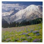 USA, Washington, Mt. Rainier National Park. Tile