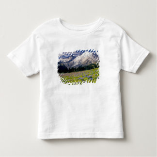USA, Washington, Mt. Rainier National Park. Toddler T-shirt