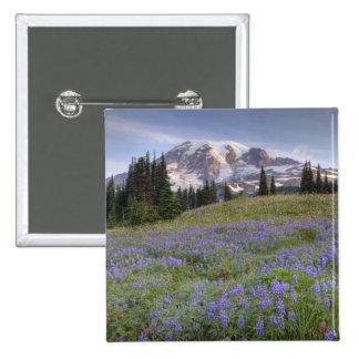 USA, Washington, Mt. Rainier NP, Mt. Rainier and Pin