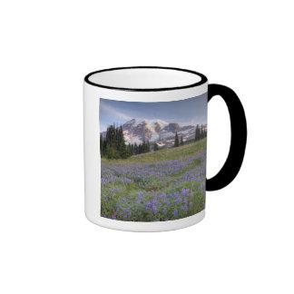 USA, Washington, Mt. Rainier NP, Mt. Rainier and Mug