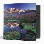 USA, Washington, Mt. Rainier NP, sunrise, 3 Ring Binders
