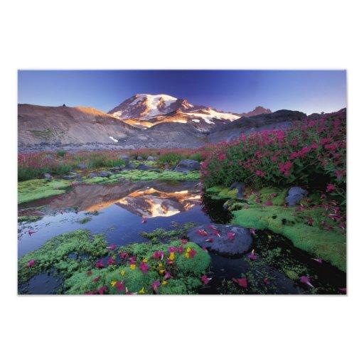USA, Washington, Mt. Rainier NP, sunrise, Photo Print