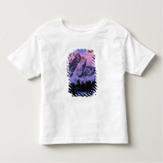USA, Washington, Mt. Shuskan in North Cascades Toddler T-shirt