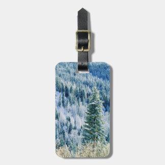 USA, Washington, Mt. Spokane State Park, Aspen 2 Tag For Luggage