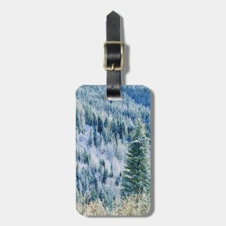 USA, Washington, Mt. Spokane State Park, Aspen Luggage Tag