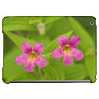 USA, Washington, North Cascades National Park 4 Case For iPad Air