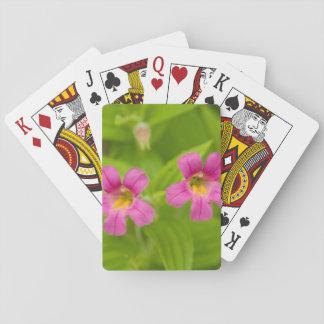 USA, Washington, North Cascades National Park 4 Deck Of Cards