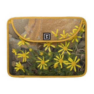 USA, Washington, North Cascades National Park 7 Sleeve For MacBooks