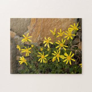 USA, Washington, North Cascades National Park 7 Jigsaw Puzzle