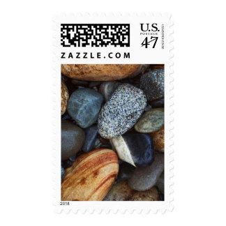 USA, Washington, Okanogan-Wenatchee National 2 Postage