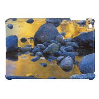 USA, Washington, Okanogan-Wenatchee National iPad Mini Covers