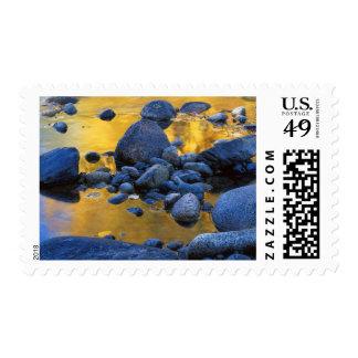 USA, Washington, Okanogan-Wenatchee National Postage