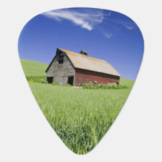 USA, Washington, Old Red Barn in the Spring Guitar Pick