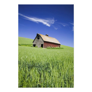 USA, Washington, Old Red Barn in the Spring Photo