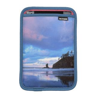 USA, Washington, Olympic National Park 2 Sleeve For iPad Mini