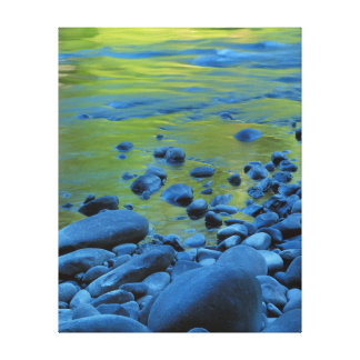USA, Washington, Olympic National Park 4 Canvas Print